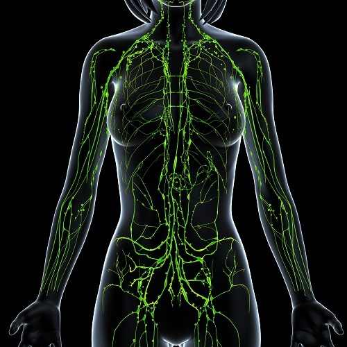 how to cleanse your lymphatic system naturally
